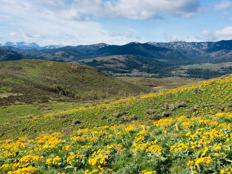 Methow Valley Scenery